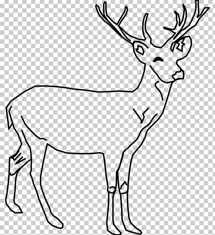 Buck clipart white tailed deer. Moose red png animal