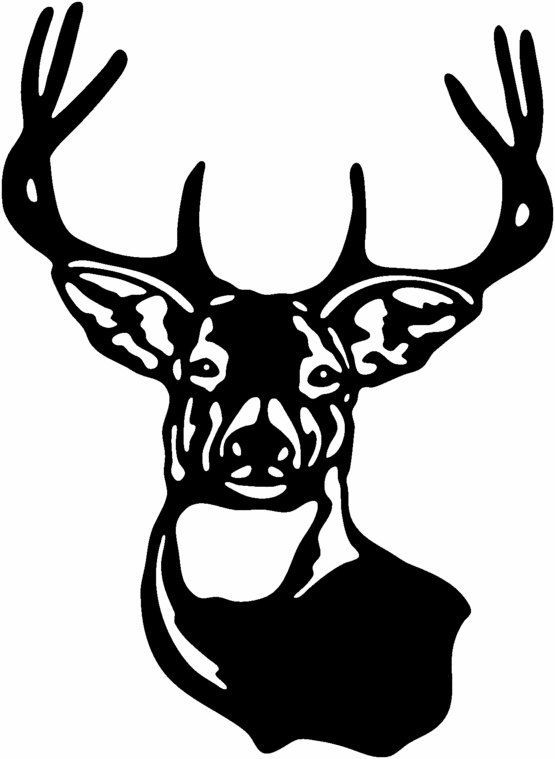 best cnc images. Buck clipart white tailed deer