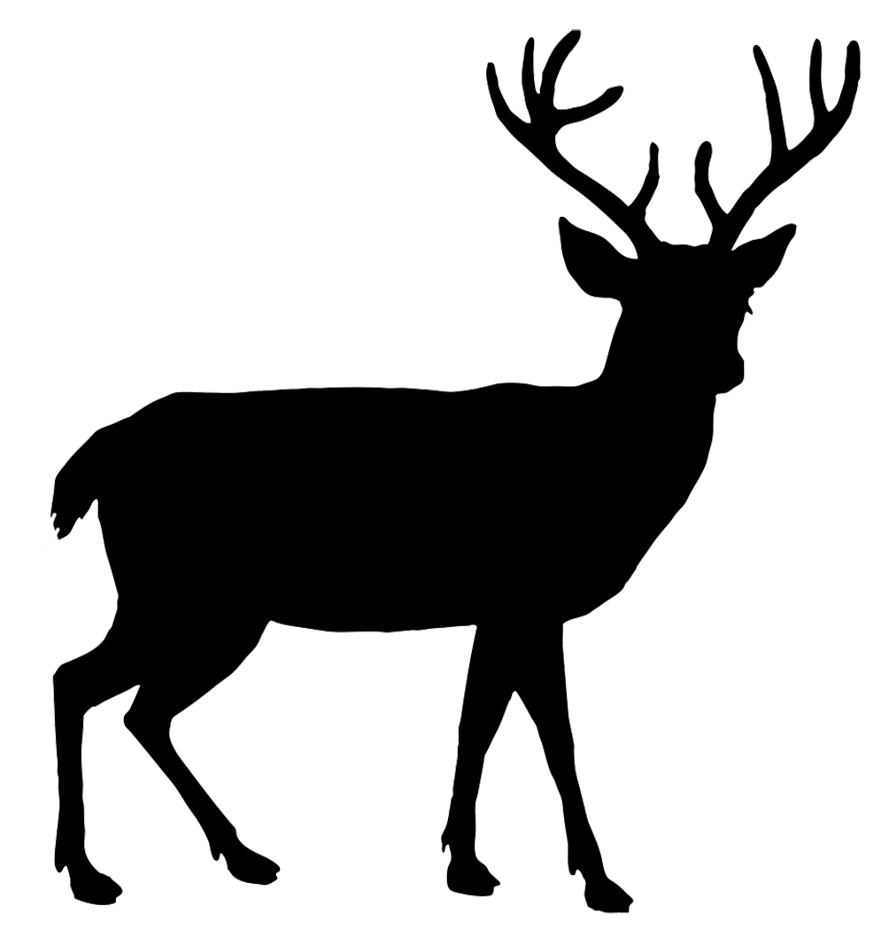 clipart mountain deer