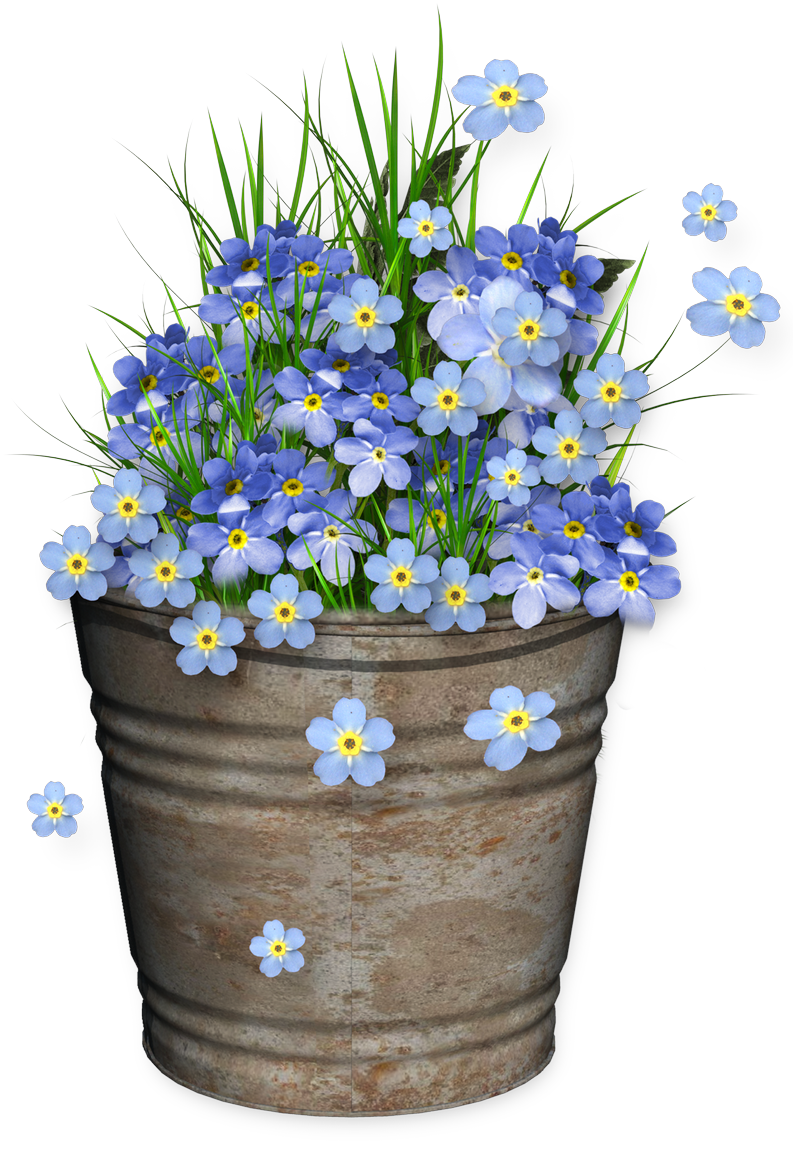 Cheyokota digital scraps spring. Garden clipart bucket