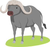Free clip art pictures. Buffalo clipart