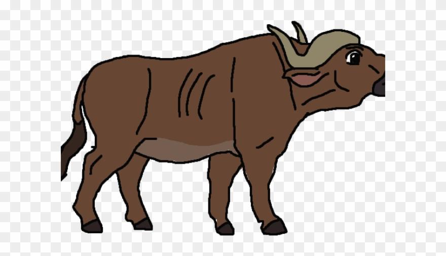 Wild png download . Buffalo clipart african buffalo