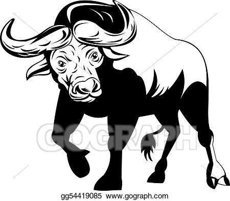 On attack stock illustration. Buffalo clipart african buffalo