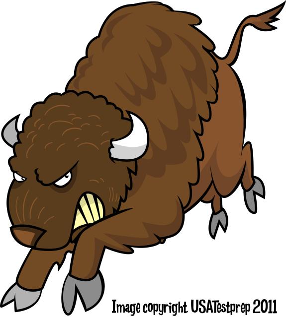 Buffalo clipart animation. Free cartoon download clip