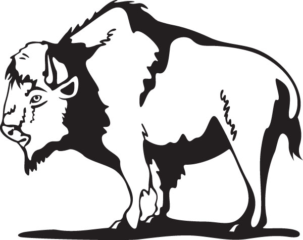 Buffalo clipart black and white. Free cliparts download clip