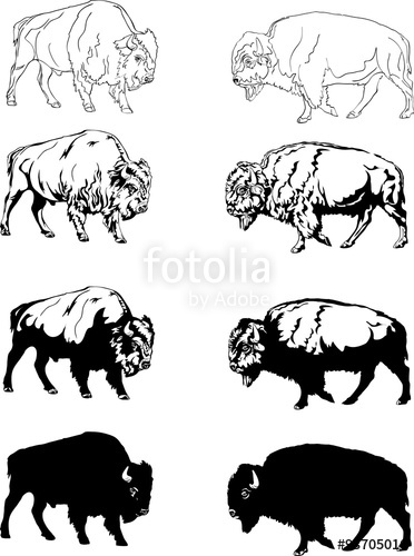Bison clipart vector. Buffalo head free collection