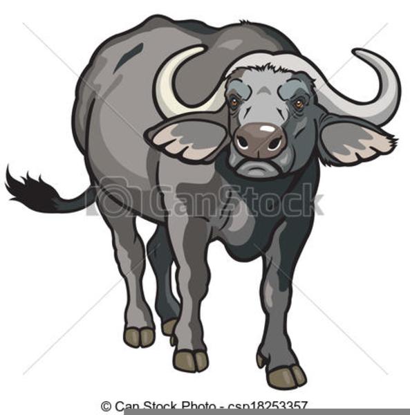 buffalo clipart buffalo indian