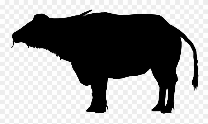 Water silhouette images . Buffalo clipart buffalo indian
