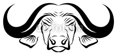 Animals for african head. Buffalo clipart cape buffalo