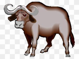 Buffalo clipart clip art. African cape water