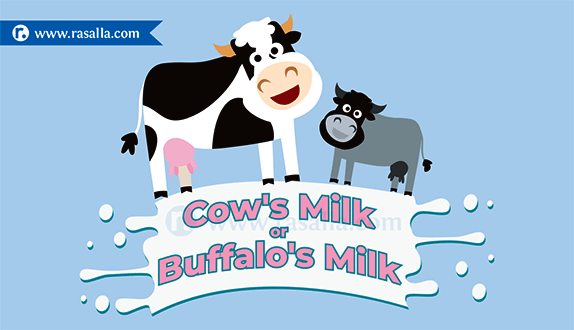 Buffalo clipart cow. S milk or which