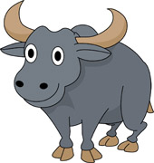 Free clip art pictures. Bison clipart female buffalo