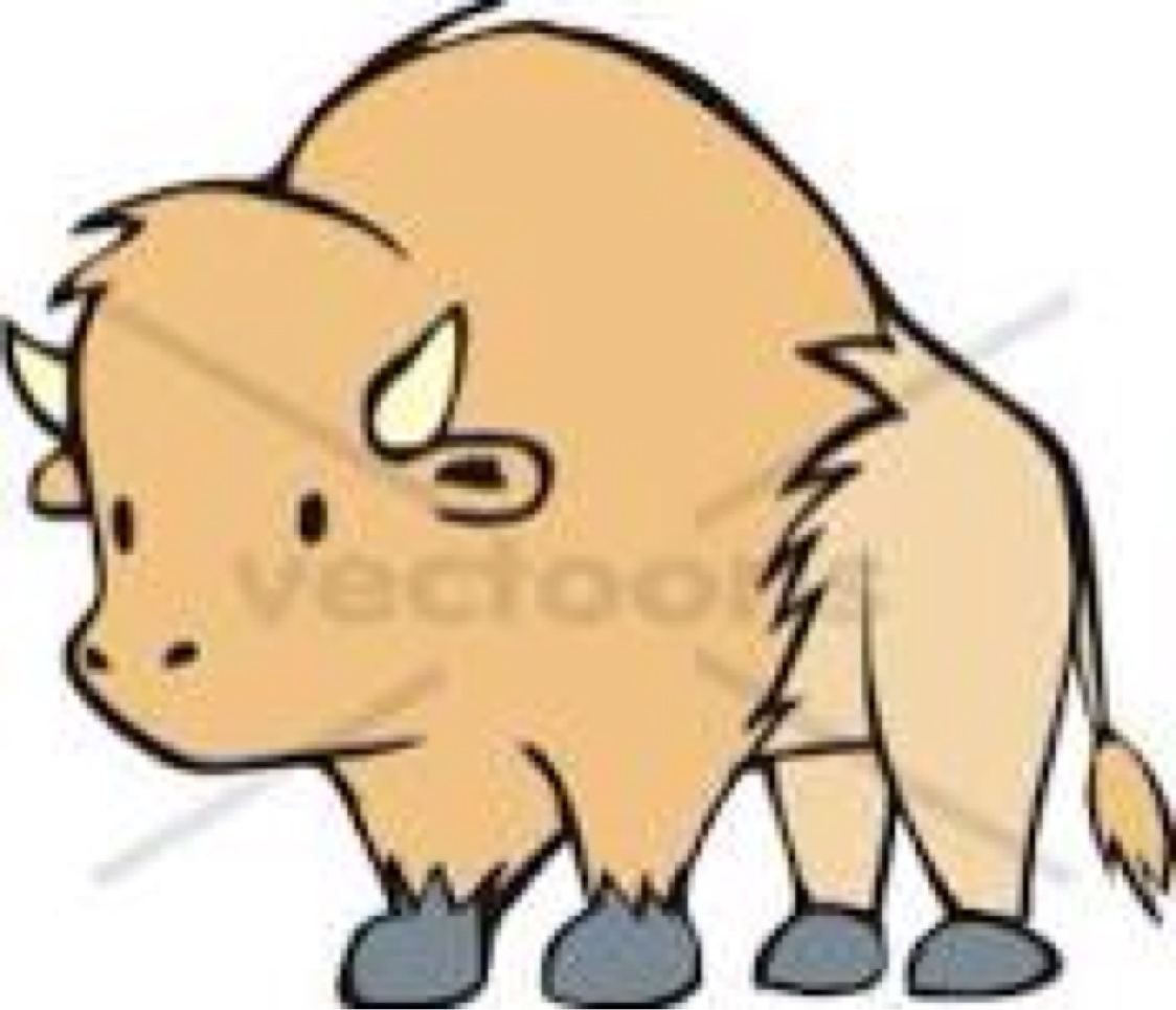 Buffalo clipart cute. United states by audrey