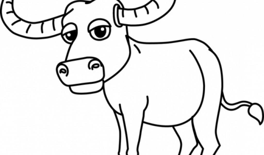 buffalo clipart drawing