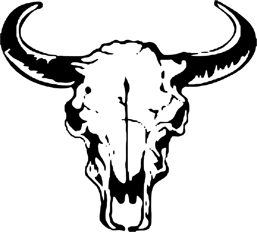 Buffalo drawing at getdrawings. Longhorn clipart head