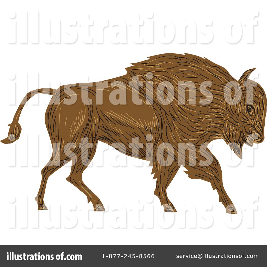By patrimonio royaltyfree rf. Buffalo clipart illustration