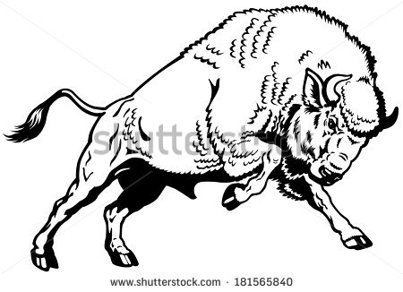 Buffalo clipart illustration.  collection of running