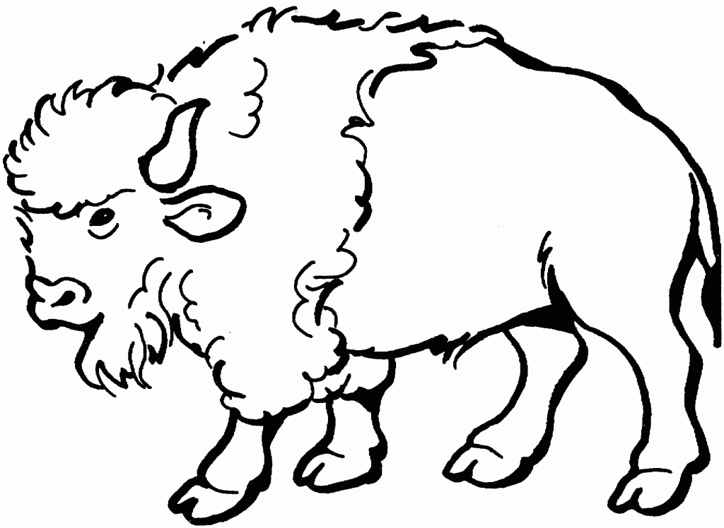 Buffalo clipart line. Drawing of a clip