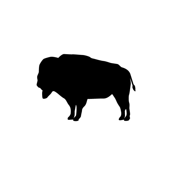 Free cliparts download clip. Buffalo clipart simple