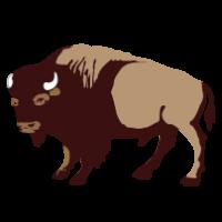 buffalo clipart transparent