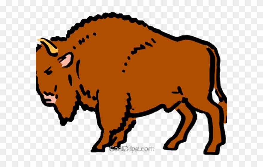 Buffalo clipart transparent. Png dirty