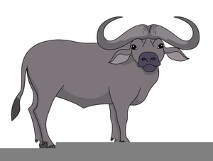 Buffalo clipart vector. Cape free images at
