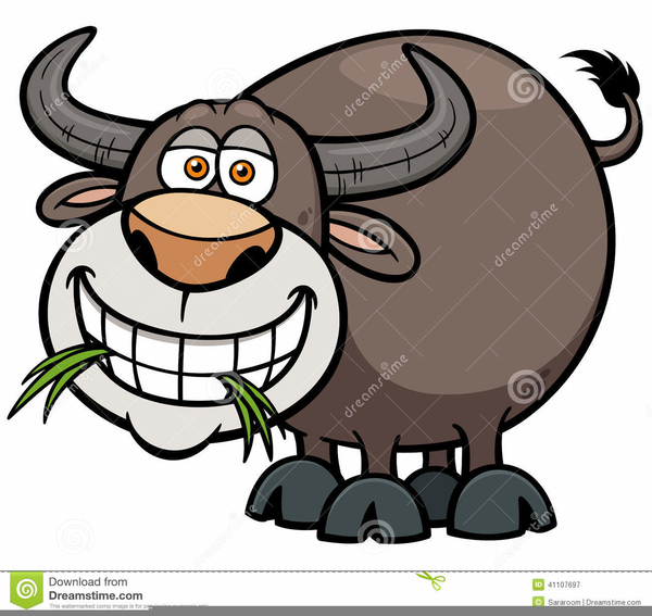 Buffalo clipart water buffalo. Free images at clker