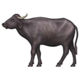 Buffalo clipart water buffalo. Panda free images info