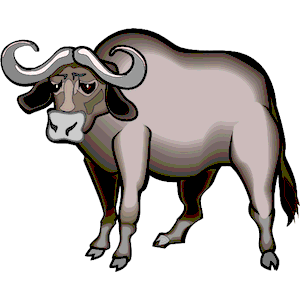 Cliparts of free . Buffalo clipart water buffalo