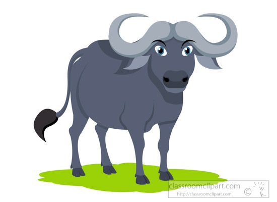 Animal waterbuffaloclipartjpg. Buffalo clipart water buffalo