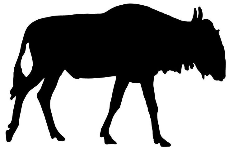 Buffalo clipart wildebeest.  best project images