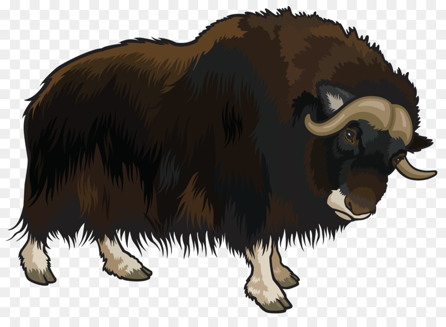 Buffalo clipart yak. Domestic clip art cartoon