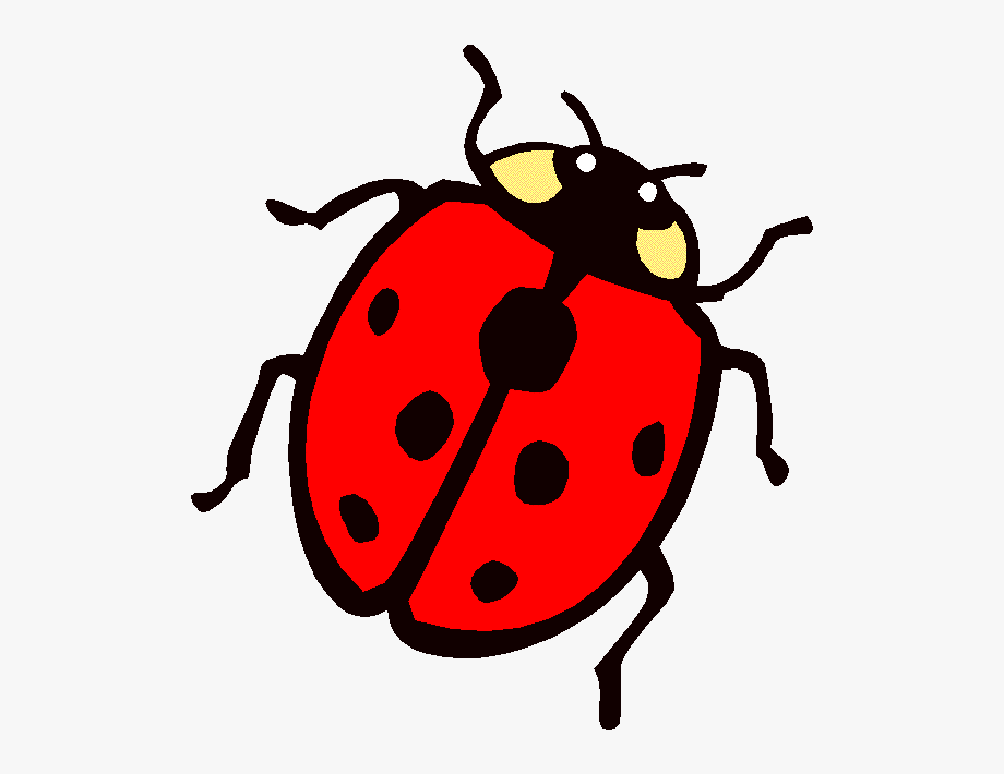 Colouring page lady the. Bug clipart