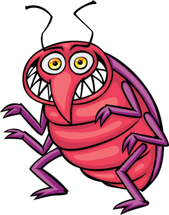 Bed bug . Bugs clipart animated