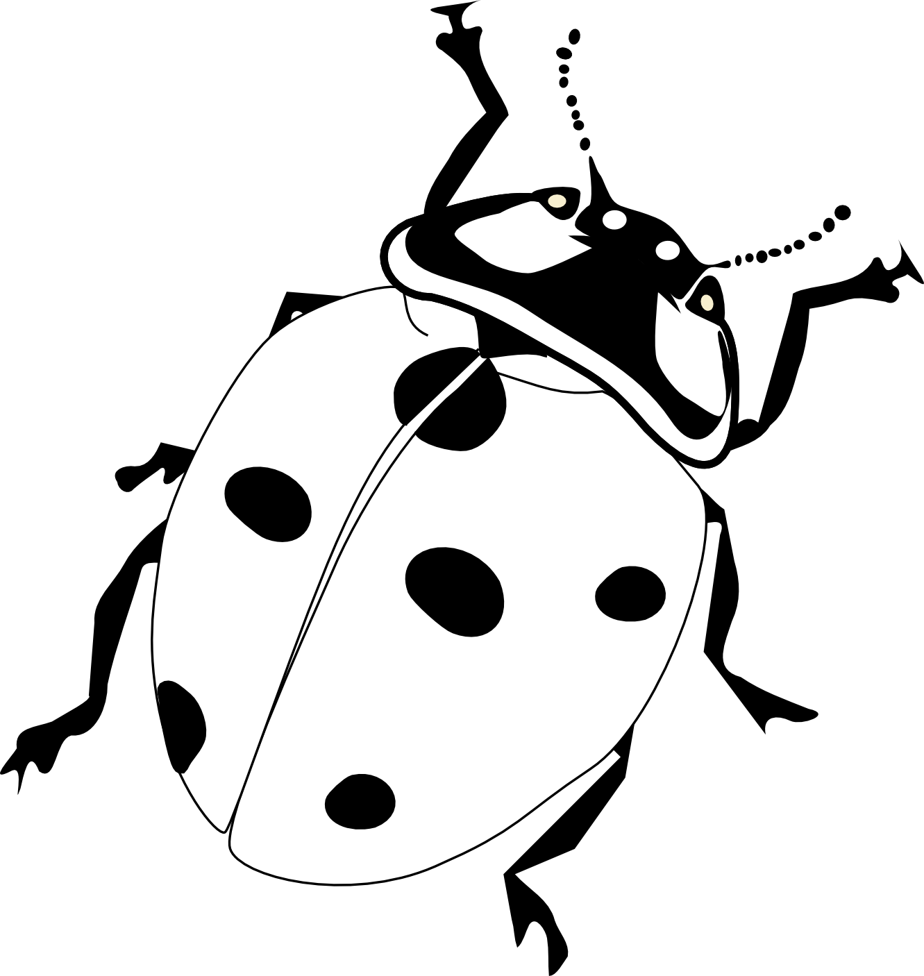 Ladybug clipart sketch. Bug black and white