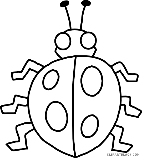 Black and white bug. Insect clipart borders