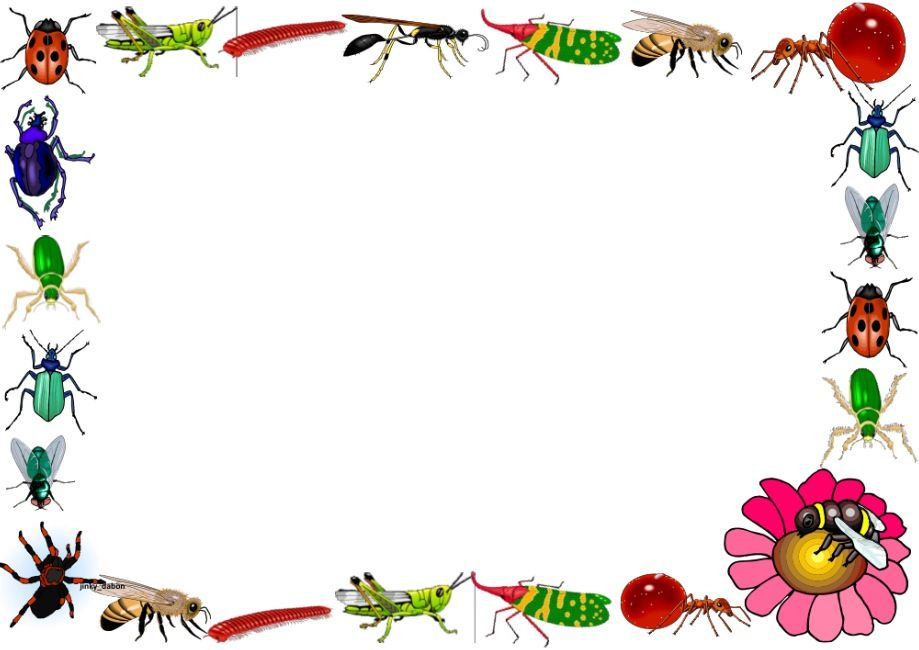 Insects themed lined paper. Insect clipart borders