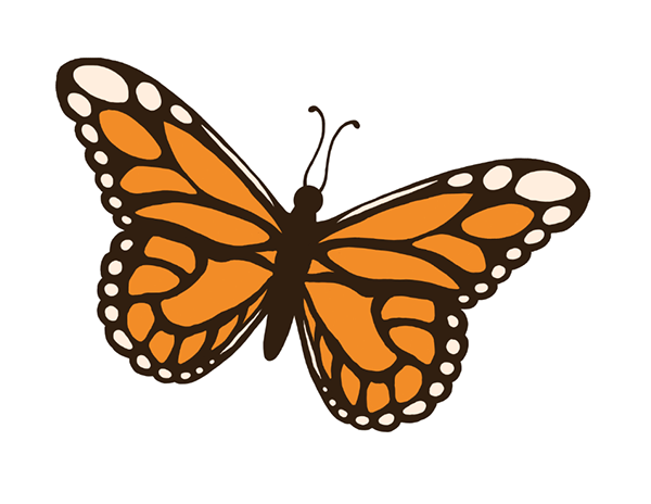 Free download best . Clipart butterfly insect
