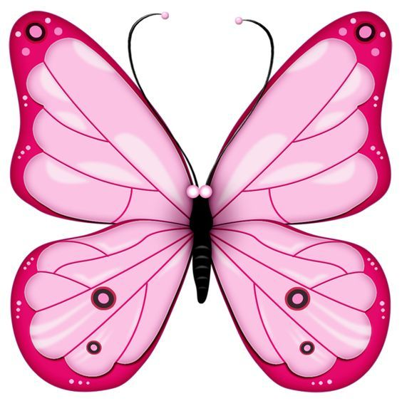 Pink transparent heart png. Bugs clipart butterfly