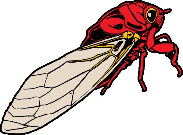 Clip art at clker. Bug clipart cicada