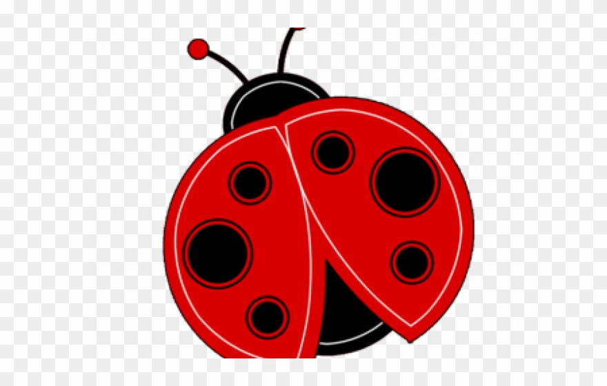 Insect clip art . Ladybugs clipart transparent background
