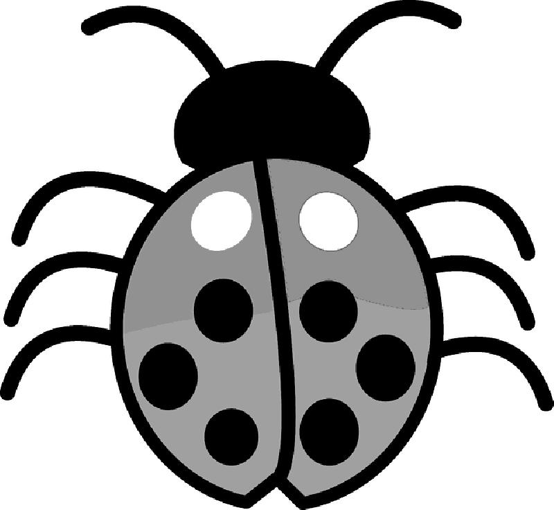 Debugging error windows microsoft. Bug clipart computer