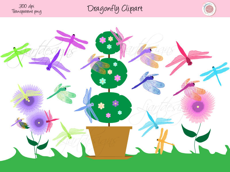 Digital clip art scrapbooking. Bug clipart dragonfly