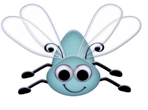 best bugs images. Bug clipart fly