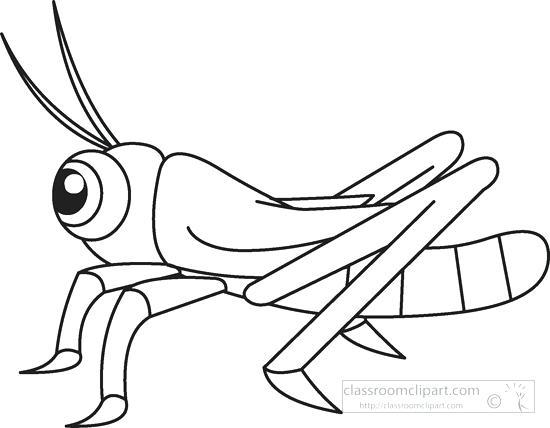 Animals grasshopper insects black. Bug clipart grass hopper