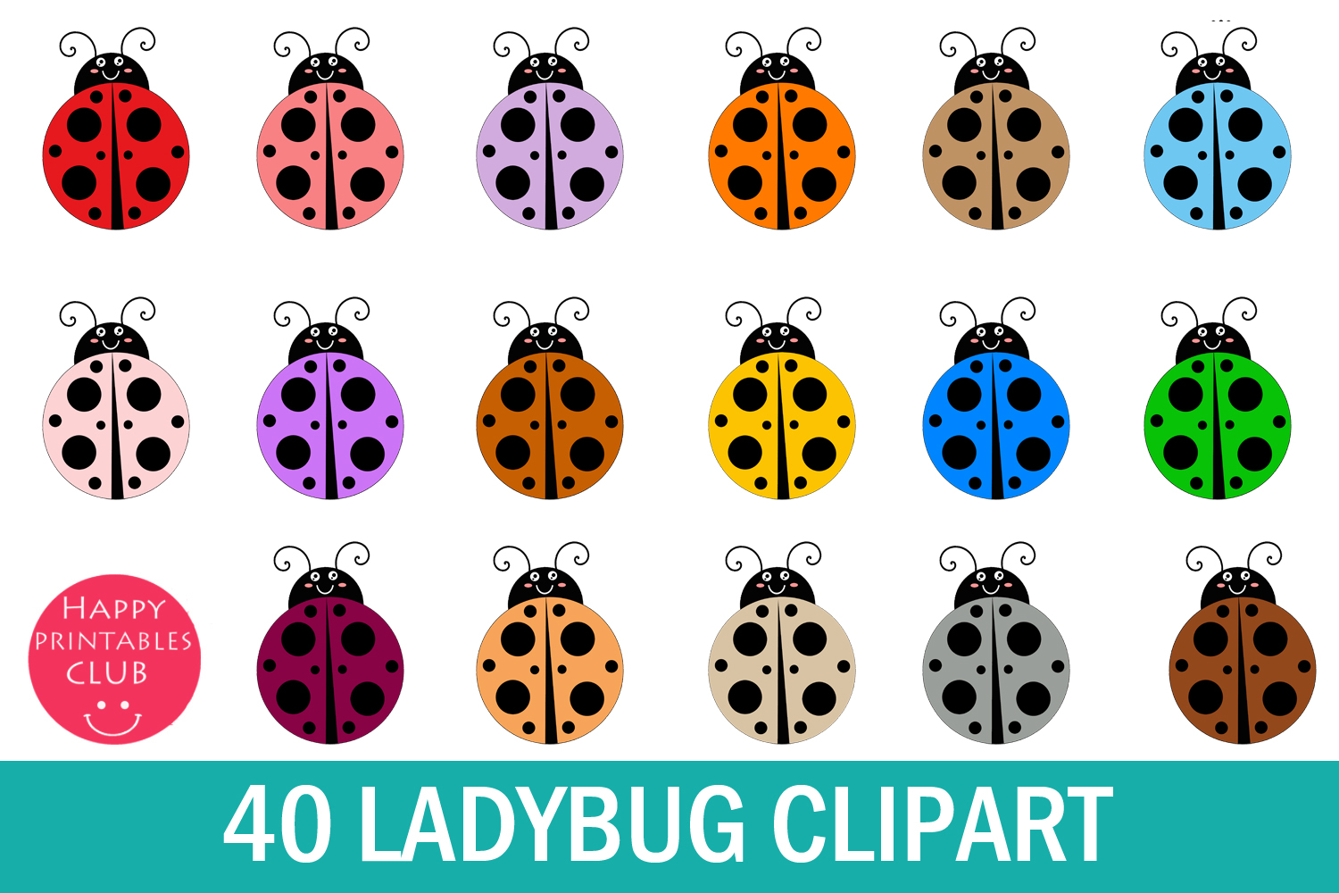 Lady bug cute . Ladybugs clipart real