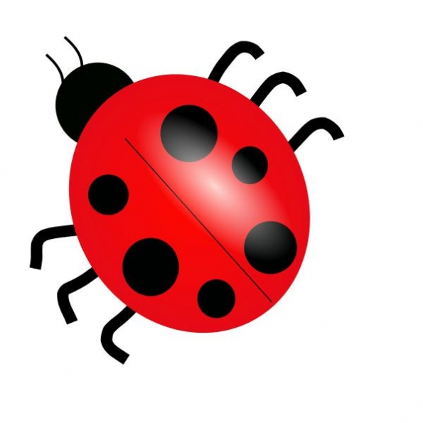 Bug clipart kid. Bugs and insects clipartix