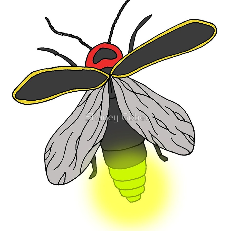 cool firefly insect. Bug clipart lightning bug