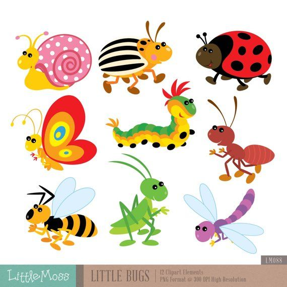 Clipart flowers insect. Little bugs digital products