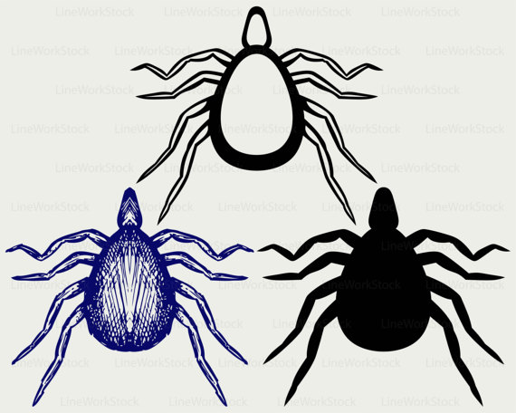 Svg insects silhouette cricut. Bug clipart mite